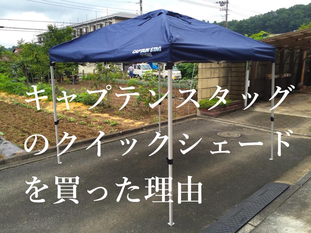 f:id:sakuraginaoto:20160731223016j:plain
