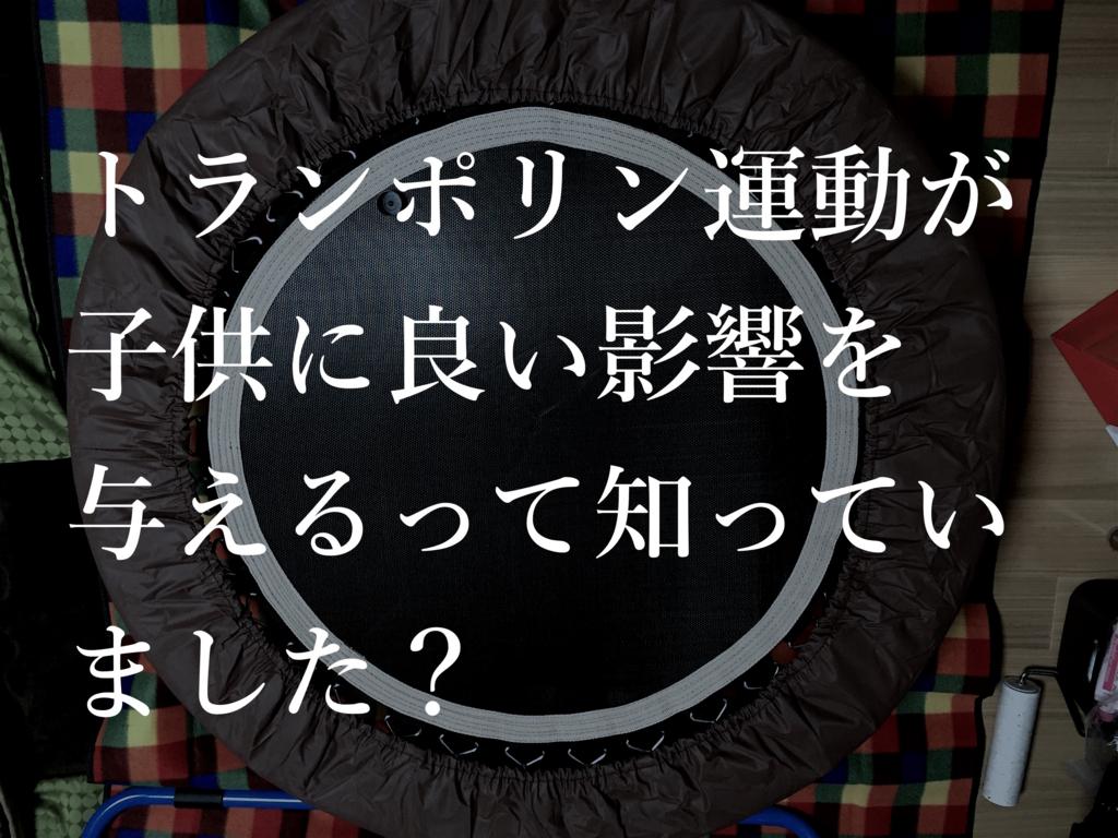 f:id:sakuraginaoto:20170106174051j:plain