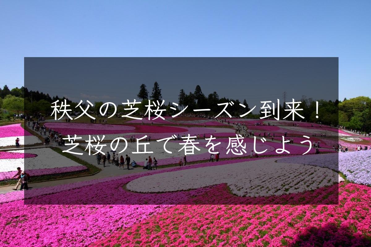 f:id:sakuraginaoto:20190417225004j:plain