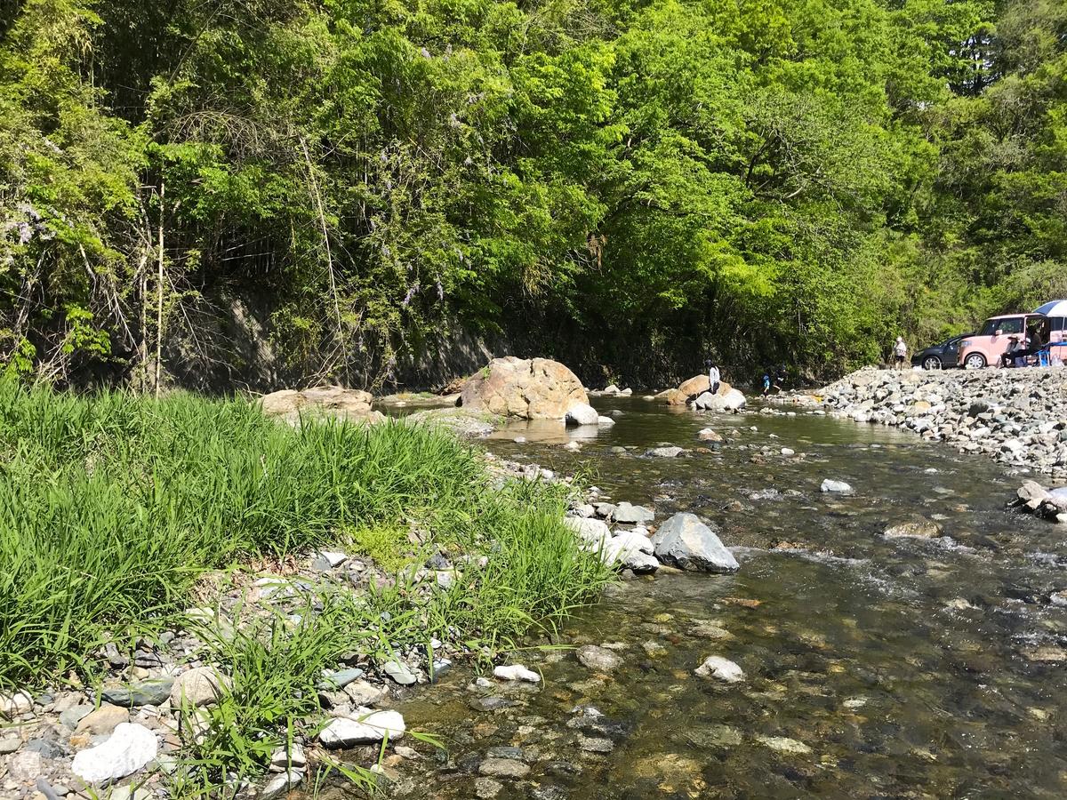 武甲キャンプ場、川