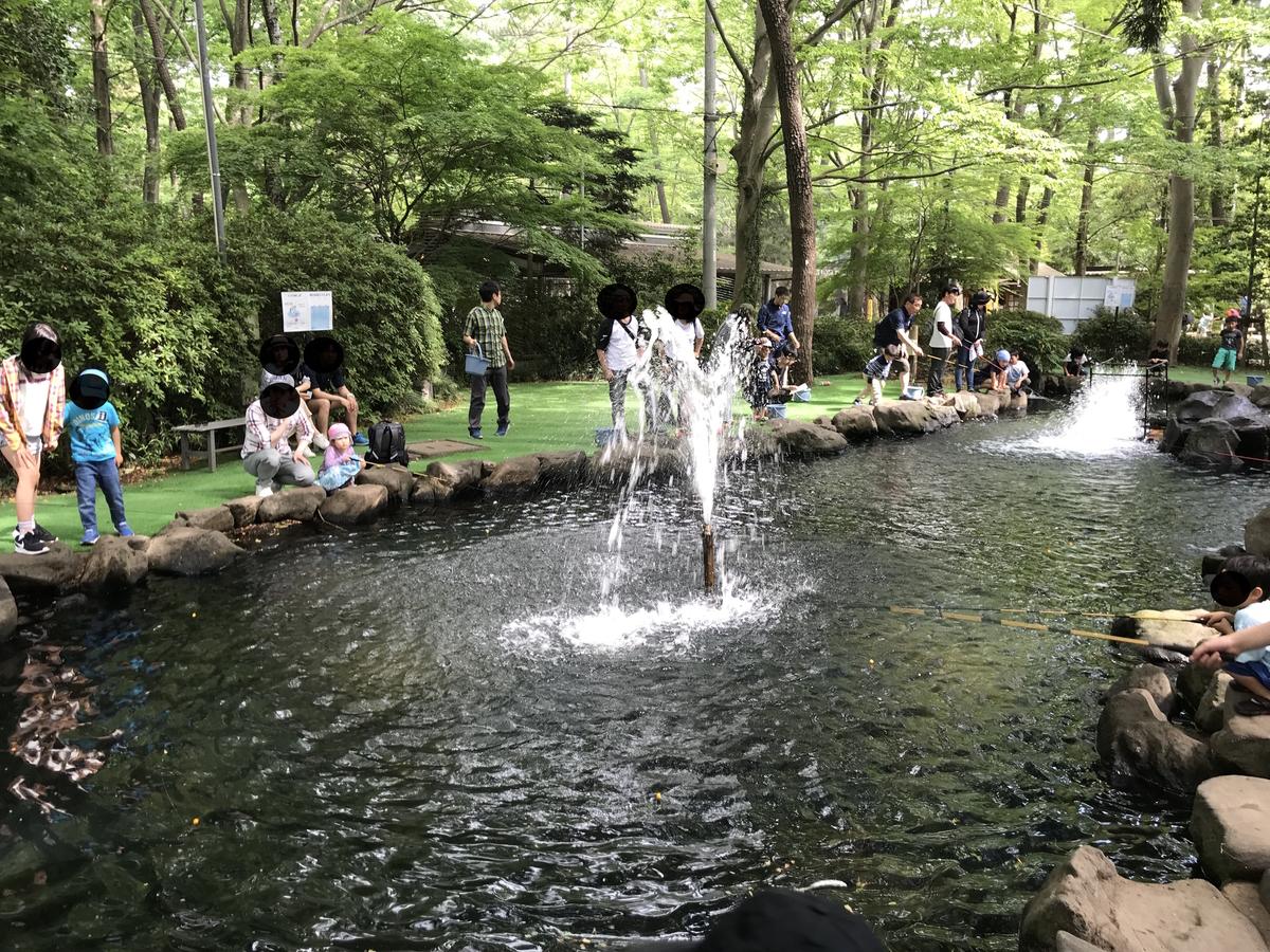 清水公園キャンプ場マス釣り