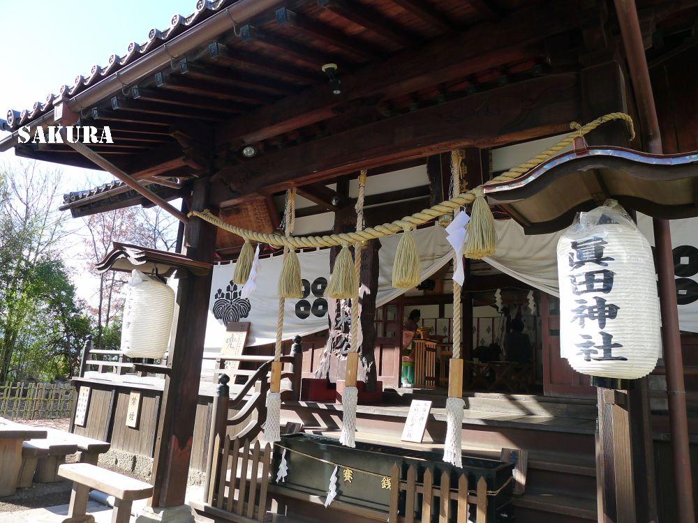 f:id:sakuraho:20160915222730j:plain