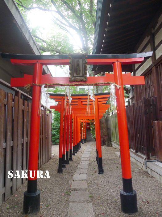 f:id:sakuraho:20161022191845j:plain