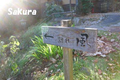 f:id:sakuraho:20161225222123j:plain