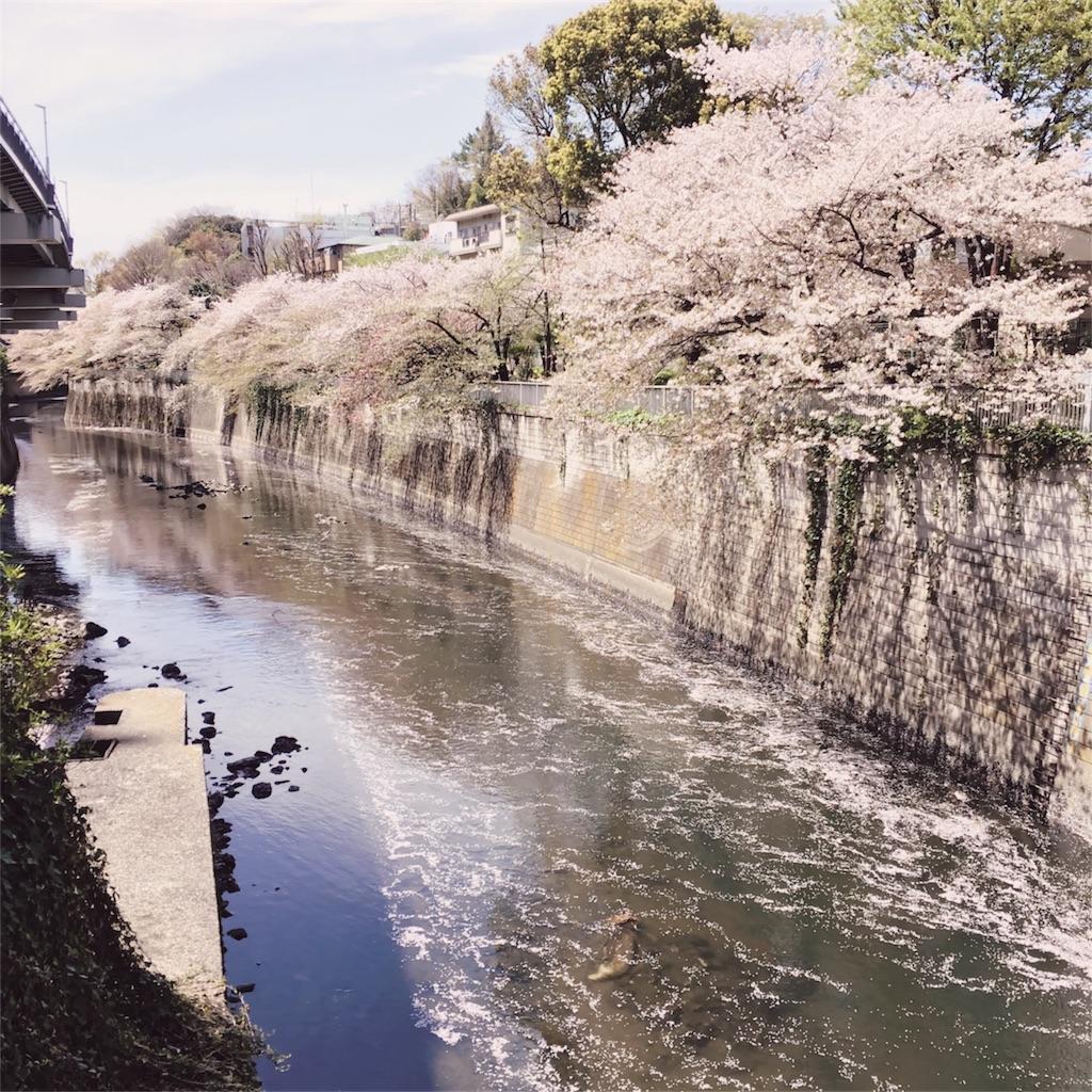f:id:sakurai104:20170430102240j:image