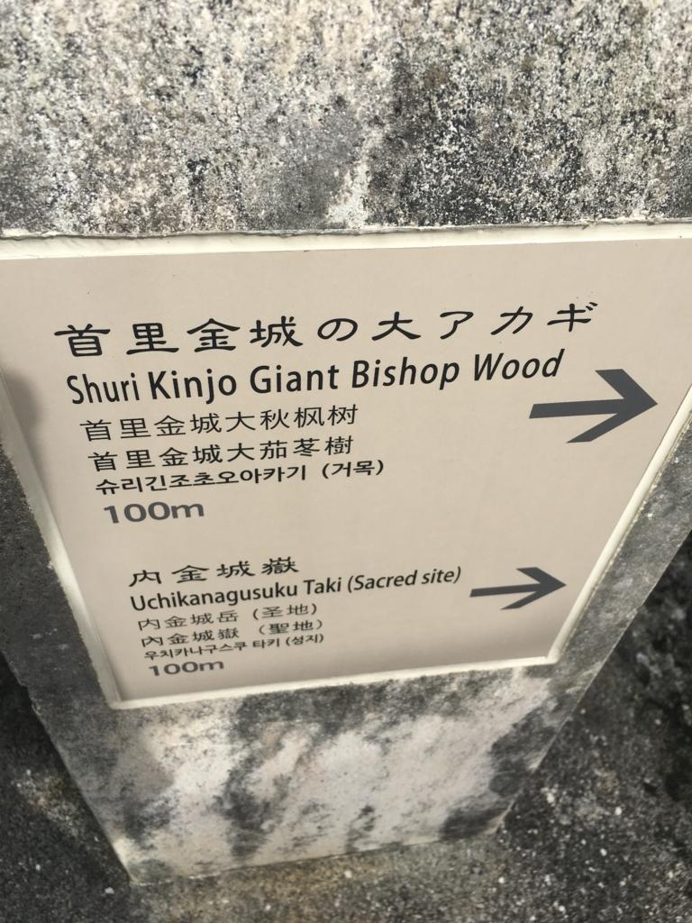 f:id:sakurai_mari:20170206103240j:plain