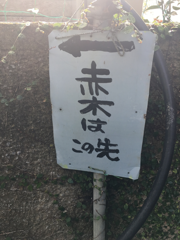 f:id:sakurai_mari:20170206103336j:plain