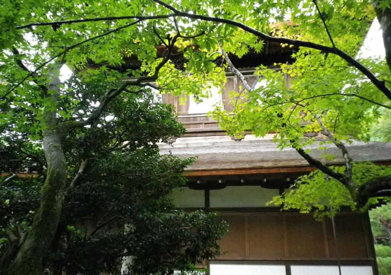 f:id:sakurairo270:20181030170049j:plain