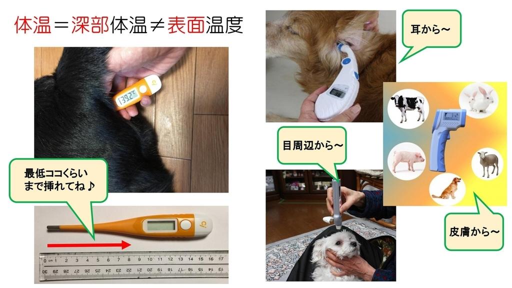 ペットの体温計