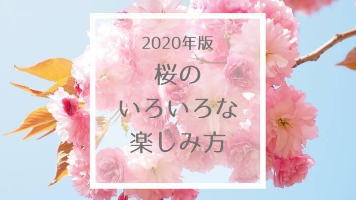 f:id:sakurako-blog:20200411224219j:plain