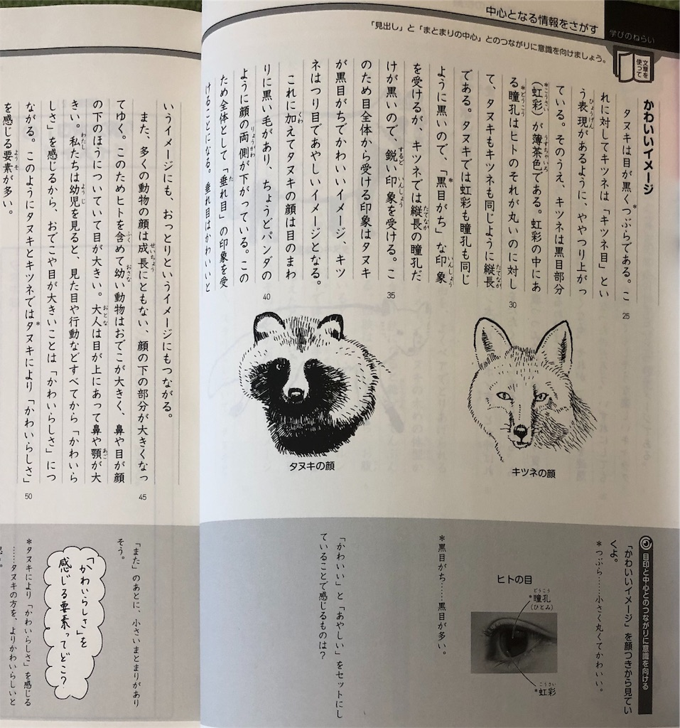 f:id:sakurako-tulipko:20200209115459j:image