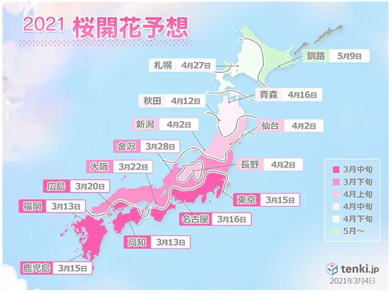 f:id:sakurako-tulipko:20210415114544j:plain