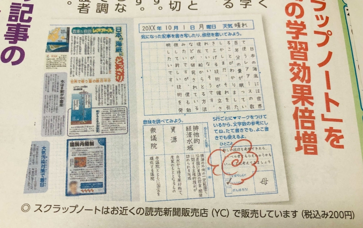 f:id:sakurako-tulipko:20210716115555j:plain