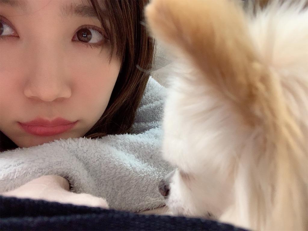 f:id:sakurako_t:20200130004857j:image