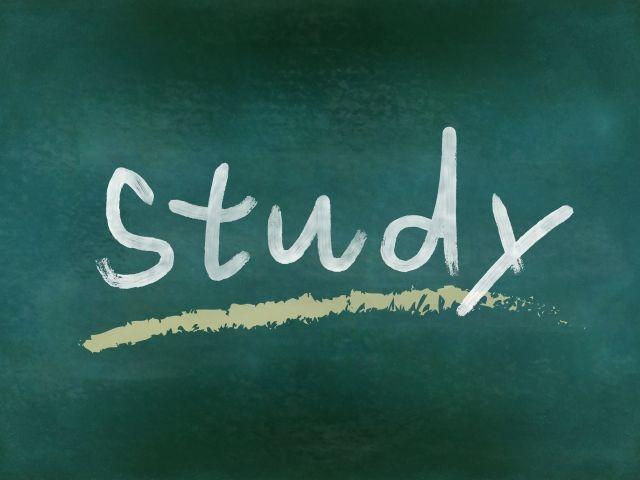 勉強 資格試験