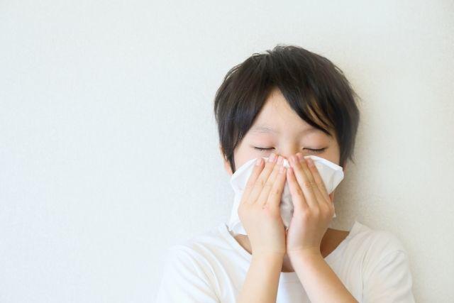 花粉症、鼻炎、風邪