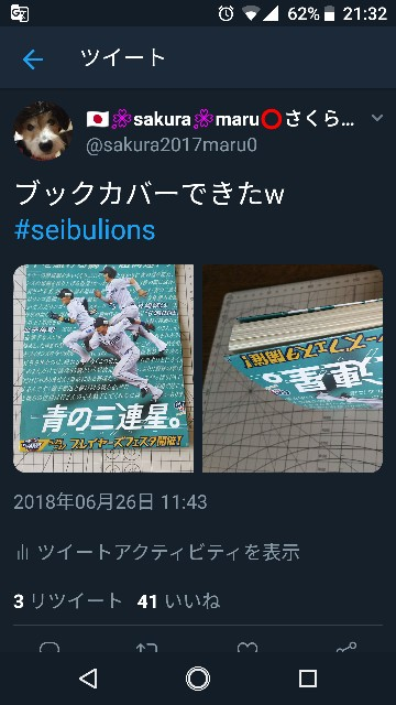 f:id:sakuramaru-japan:20181202213517j:image