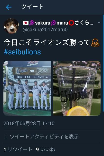 f:id:sakuramaru-japan:20181206193022j:image