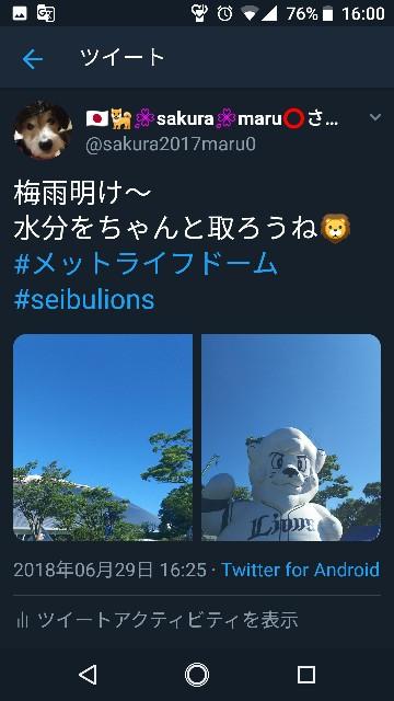f:id:sakuramaru-japan:20181208174847j:image