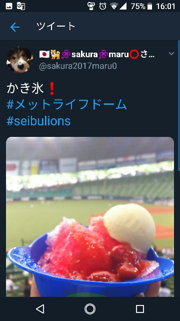f:id:sakuramaru-japan:20181208180243j:image