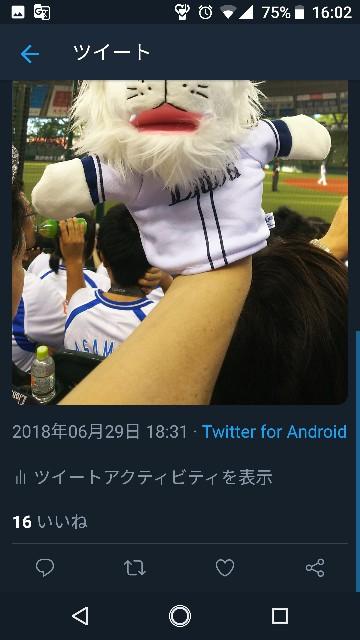 f:id:sakuramaru-japan:20181208181203j:image