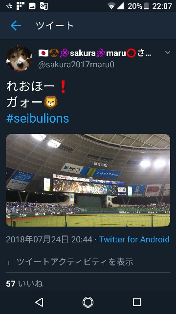 f:id:sakuramaru-japan:20181230221144j:image