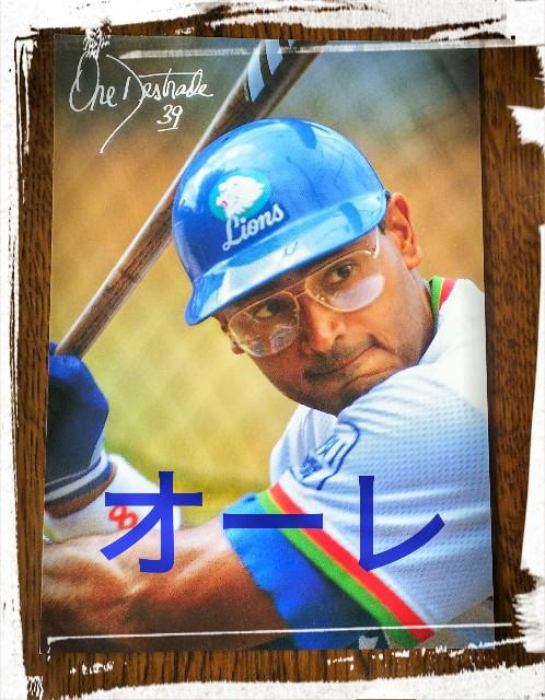 f:id:sakuramaru-japan:20190102215503j:image