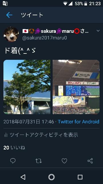 f:id:sakuramaru-japan:20190103212536j:image
