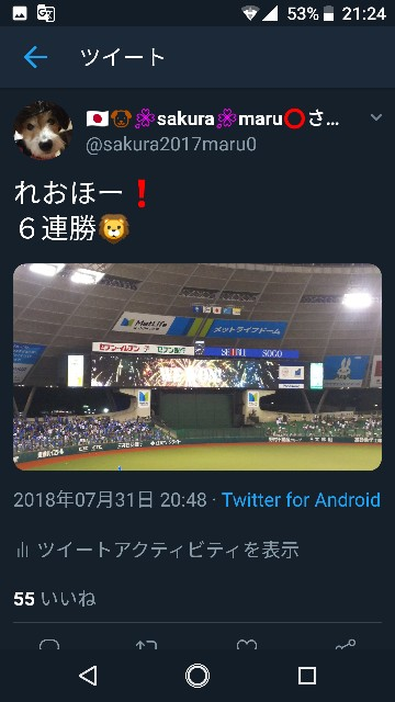f:id:sakuramaru-japan:20190103212740j:image