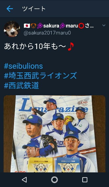 f:id:sakuramaru-japan:20190106222554j:image