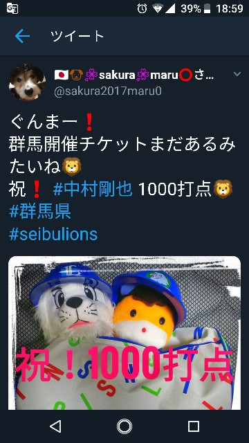 f:id:sakuramaru-japan:20190110190727j:image