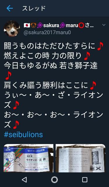 f:id:sakuramaru-japan:20190113181823j:image