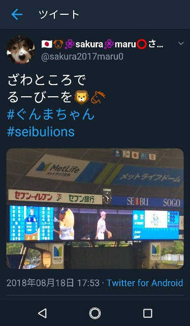 f:id:sakuramaru-japan:20190121194942j:image