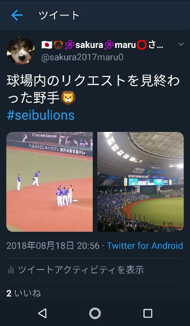 f:id:sakuramaru-japan:20190121213400j:image