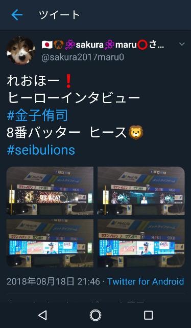 f:id:sakuramaru-japan:20190121213802j:image
