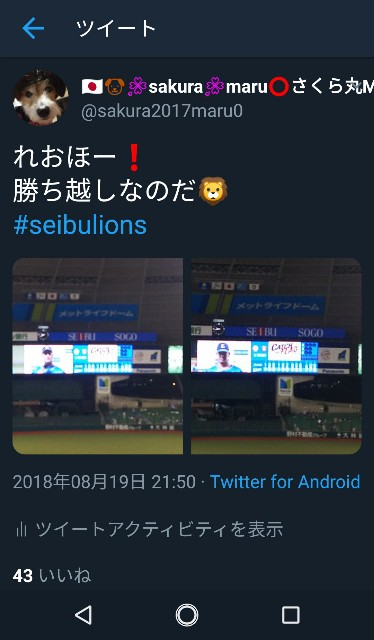 f:id:sakuramaru-japan:20190130223515j:image