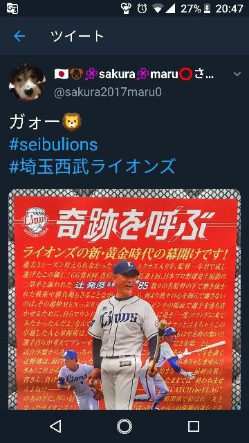 f:id:sakuramaru-japan:20190222204845j:image