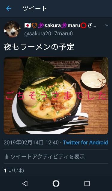 f:id:sakuramaru-japan:20190226131445j:image