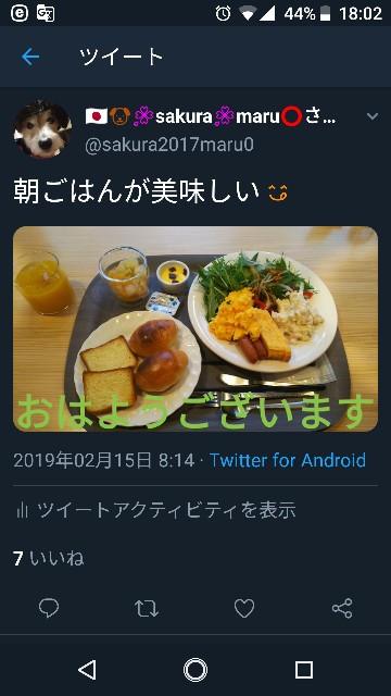 f:id:sakuramaru-japan:20190226180331j:image
