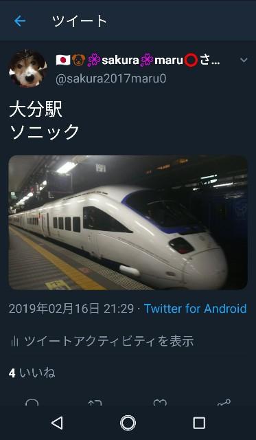 f:id:sakuramaru-japan:20190228161801j:image