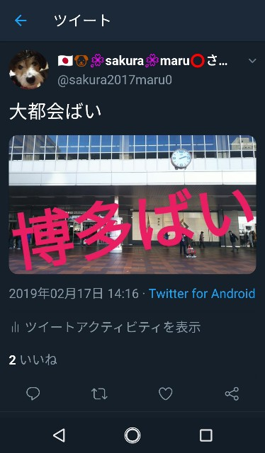 f:id:sakuramaru-japan:20190302140112j:image