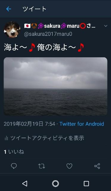 f:id:sakuramaru-japan:20190304151226j:image