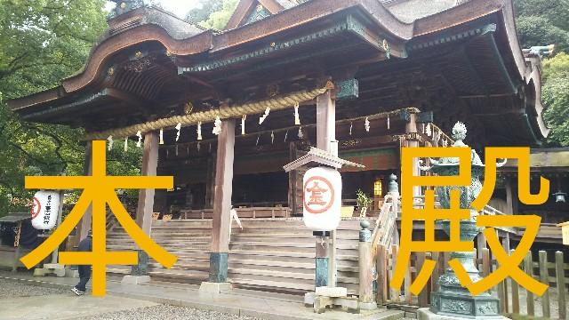 f:id:sakuramaru-japan:20190306141923j:image