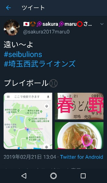 f:id:sakuramaru-japan:20190306184822j:image