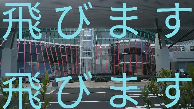 f:id:sakuramaru-japan:20190309192336j:image
