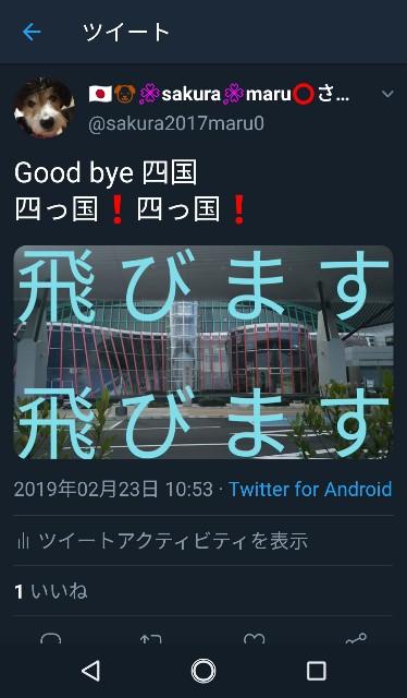 f:id:sakuramaru-japan:20190309194302j:image