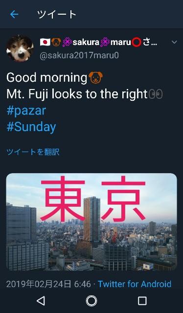 f:id:sakuramaru-japan:20190309202532j:image