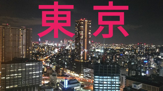 f:id:sakuramaru-japan:20190309204144j:image