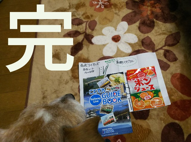 f:id:sakuramaru-japan:20190312002618j:image