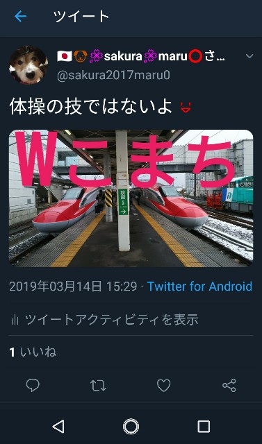 f:id:sakuramaru-japan:20190320142759j:image